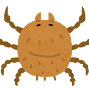 小さい赤い虫がベランダにいるけどこれって何?駆除方法は?