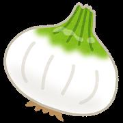 新玉ねぎの保存方法 常温 冷蔵 冷凍のポイントは?