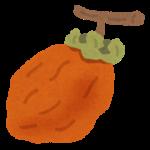 干し柿は冷凍保存できる?日持ち期間や食べ方は?