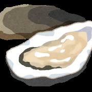 生食用牡蠣と加熱用の違いは?味はどっちが美味しいの?