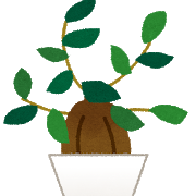 観葉植物で人気なのは?テーブルサイズで手入れ簡単&育てやすいのはコレだ!